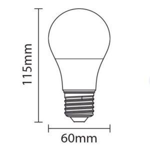 format-ampoule-12w